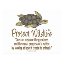Protect Sea Turtles Postcard