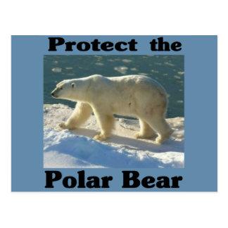 Protect the Polar Bear Postcard