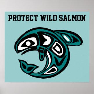 Protect Wild Salmon poster