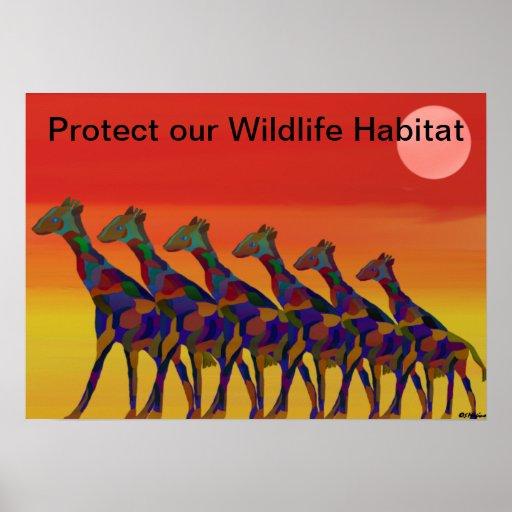 Protect Wildlife Habitat Poster