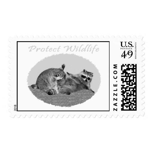 Protect Wildlife Raccoon Postage Stamp
