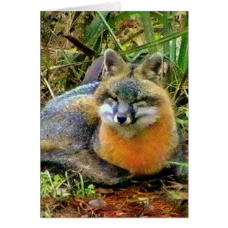 PROTECT WILDLIFE STATIONERY NOTE CARD