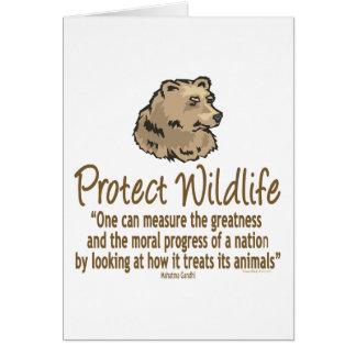 Protect Wildlife, Ursus, Bears Card