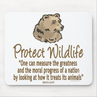 Protect Wildlife, Ursus, Bears Mouse Pad
