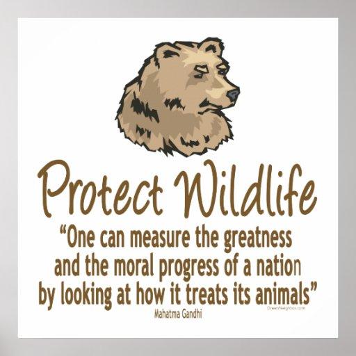 Protect Wildlife, Ursus, Bears Print
