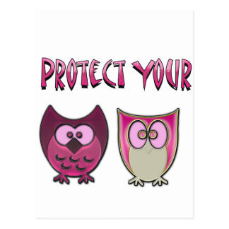 Protect Your Hooters Postcard