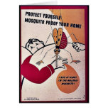 Protect Yourself Mosquito Proof Your Home