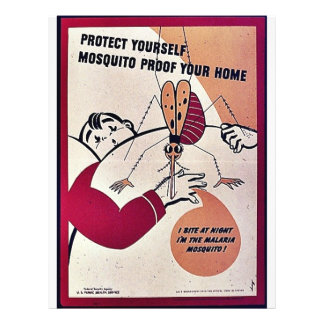 """Protect Yourself Mosquito Proof Your Home 8.5"""" X 11"""" Flyer"""