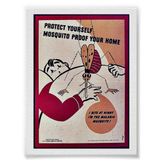 Protect Yourself Mosquito Proof Your Home Poster