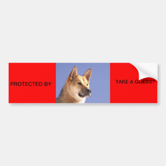 PROTECTED BY ALERT DOG BUMPER STICKER