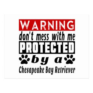 Protected By Chesapeake Bay Retriever Postcard