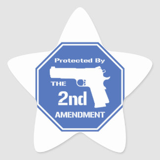 Protected By The Second Amendment (Blue) Star Sticker