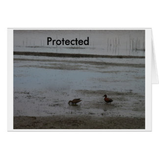 Protected Card