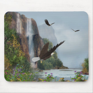 Protected Mouse Pad