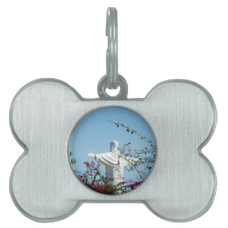 Protection Pet Tags