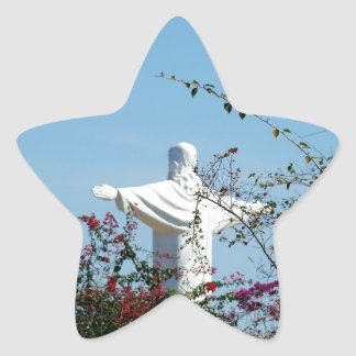 Protection Star Sticker