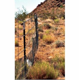 Protective Fencing for Desert Tortoise Habitat Photo Sculptures