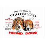 Protegido por los perros de caza postales