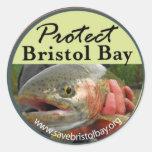 Proteja al pegatina de la bahía de Bristol