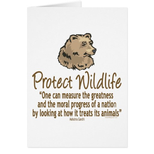Proteja la fauna, Ursus, osos Tarjeta De Felicitación