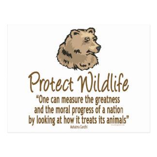 Proteja la fauna, Ursus, osos Postal