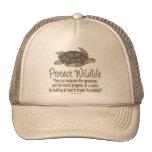Proteja las tortugas de mar gorras