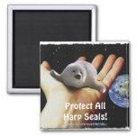 ¡Proteja todas las focas de Groenlandia! Imán de l