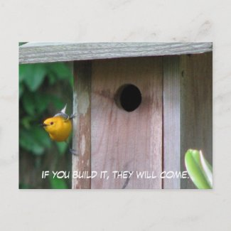 Prothonotary Box Postcard postcard