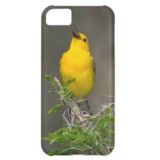 Prothonotary Warbler (Prothonotaria Citrea) Male Case For iPhone 5C