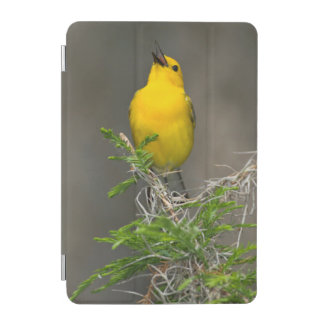 Prothonotary Warbler (Prothonotaria Citrea) Male iPad Mini Cover