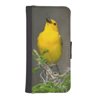 Prothonotary Warbler (Prothonotaria Citrea) Male iPhone SE/5/5s Wallet Case