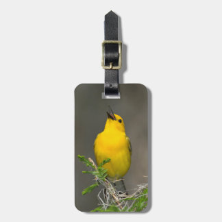 Prothonotary Warbler (Prothonotaria Citrea) Male Tag For Luggage
