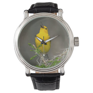 Prothonotary Warbler (Prothonotaria Citrea) Male Wrist Watches