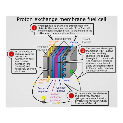fuel cell line diagram  fuel  free engine image for user
