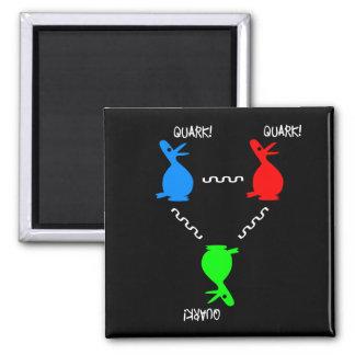 Proton Quark Duck Magnet