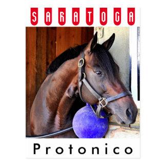 Protonico Postcard