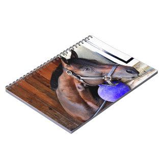 Protonico Spiral Notebooks