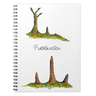 Prototaxites Notebook