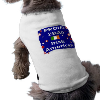Proud 2BAn Irish-American T-Shirt