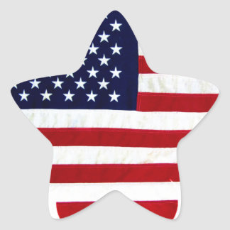 Proud American_ Star Sticker