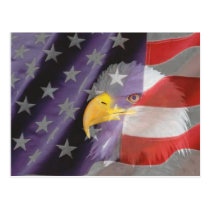 Proud and Patriotic USA Bald Eagle Postcard