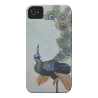 Proud As A Peacock Case-Mate iPhone 4 Case