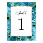Proud as a Peacock Table Number Set 1112 Postcards