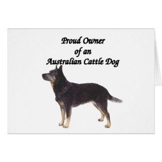 Proud Australian CattleDog Blue Card