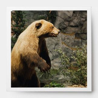 Proud Bear Envelope