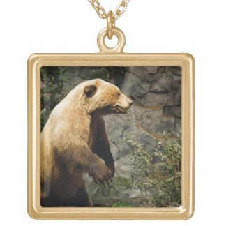 Proud Bear Square Pendant Necklace