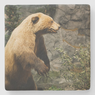 Proud Bear Stone Coaster