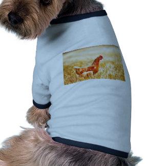 Proud Brown Rooster Struts Doggie Tee Shirt