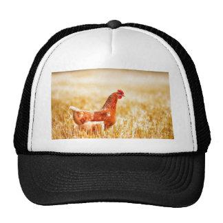 Proud Brown Rooster Struts Trucker Hat