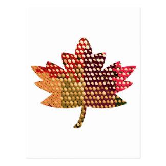 Proud CANADIAN :  Artistic MAPLE Leaf Design Postcard